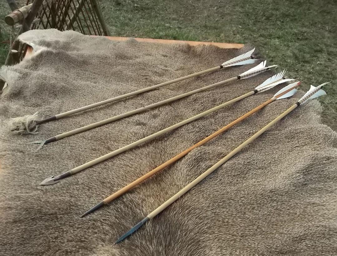 Banchetto-didattico-frecce